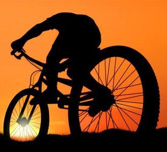 Bike4Trade ricerca collaboratore editoriale